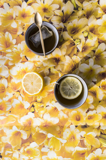 Abundance Backgrounds Beauty In Nature Close-up Copper  Cup Flower Freshness Full Frame Geometric Shape Gold Lemon Lily Nature No People Orange Color Overhead View Petal Plant SLICE Still Life Tea Tea Bag Teaspoon Yellow