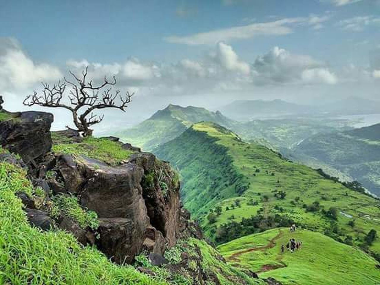 landscape, nature, mountain, scenics, beauty in nature, tranquility, tree, travel, field, tranquil scene, travel destinations, no people, outdoors, agriculture, cloud - sky, sky, day, plant, rural scene, fog, growth, vacations, terraced field, rice paddy