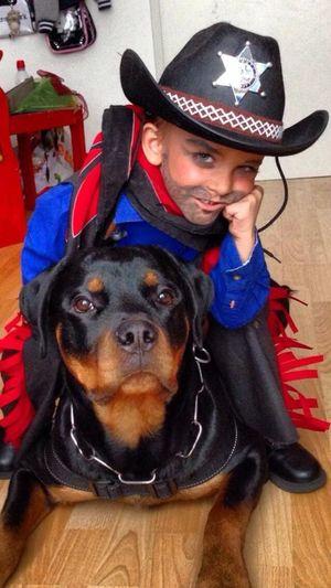 Bad Boys Rottweiler Enjoying Life Hello World Fasnacht Beatiful
