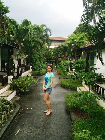 тайланд Thailand Koh Samui Bungalow отдых Relaxing отель отпуск