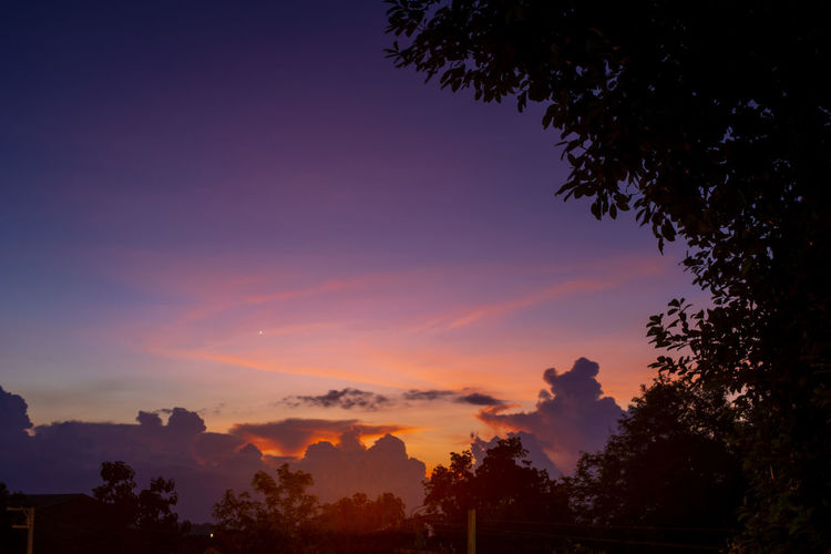 Low angle view of silhouette trees against romantic sky