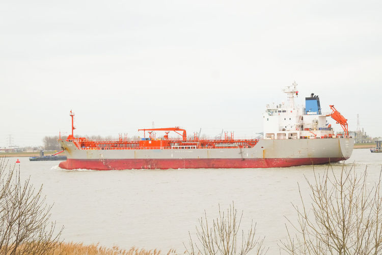 Doel, Antwerp, Belgium – February 2019: Large cargo ship leaving the Antwerp harbor heading for the open sea Water Nautical Vessel Transportation Sky Ship Mode Of Transportation Nature Freight Transportation Day Shipping  Sea No People Business Outdoors Beach Container Ship Red Industry Land
