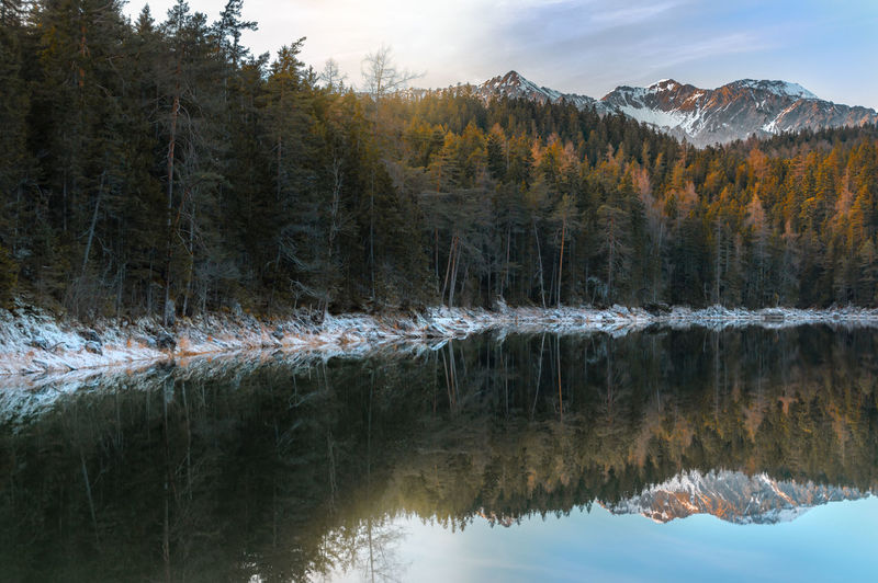 Winter landscape with fir forest and the peaks of Alps mountains reflected in the Eibsee lake, on a sunny day, near Garmisch-Partenkirchen, Germany. Bavaria Water Reflections Winter Bavarian Alps Coniferous Tree Forest Germany Lake Landscape Mountain Nature Reflection Reflection Lake Scenics - Nature Tranquility Water