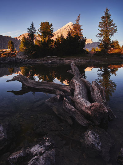 Lago di Limides, South Tyrol - Italy Water Tree Tranquility Beauty In Nature Plant Nature Sky Tranquil Scene Scenics - Nature No People Day Lake Rock Non-urban Scene Solid Outdoors Rock - Object Reflection Land Driftwood Lago Di Limedes Italy Reflection Dolomites September