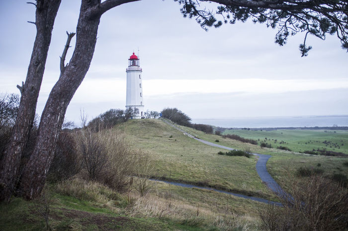 View on path leading to lighthouse on the island of Hiddensee, baltic sea, Germany Baltic Sea Framed Framed By Nature Hiddensee 2014 Islandlife Lighthouse Nature Photography Path Peace And Quiet Quiet Moments Quiet Places Symbolic Nature Symbolic Path Tree Wintertime
