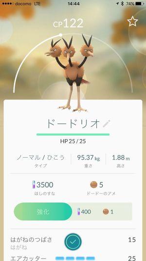pokemon GO ‼ Pokemon!