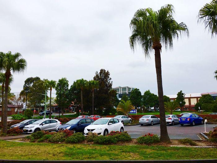 Coloudy and rainy day in Sydney Sydney, Australia Rainy Days