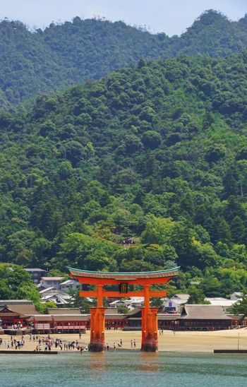 Shrines & Temples Shrine Shrine Of Japan Torii Gates Torii Gate TORII Tori Tree Mountain Spirituality Day Green Color Religion No People Travel Destinations Built Structure Outdoors Architecture Place Of Worship Beauty In Nature Scenics