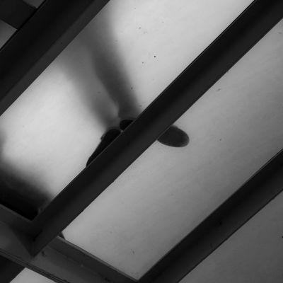 Dancing on the ceiling Abstract Architectural Feature Black And White Black And White Photography Ceiling Geometric Shape Glass - Material Indoors  No People Shadows Urban Geometry Urban Lines Monochrome Photography The City Light Minimalz