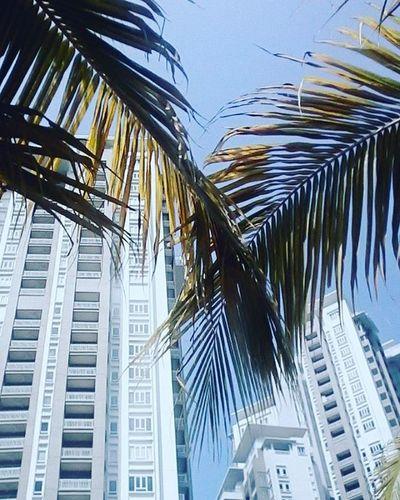 At Quayside StraitsQuay Penang .A Luxurious Condominium Beachandresorts
