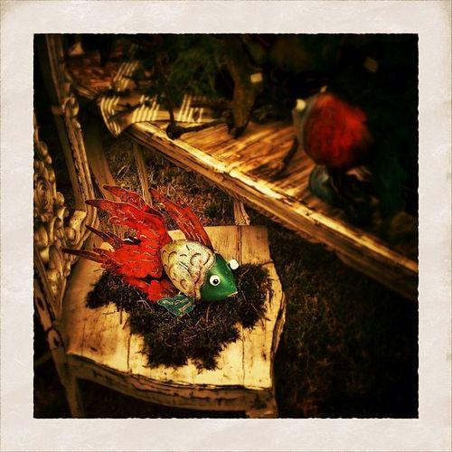 go fishing Bestoftheday Igers Instago Jj  Statigram Instagramhub Instadaily Pictureoftheday IPhone Jj_forum IPhoneography Iphoneology IPhoneographer Photoparade Photography Instgramers Photooftheday Instgood Instagram Picoftheday Instamood
