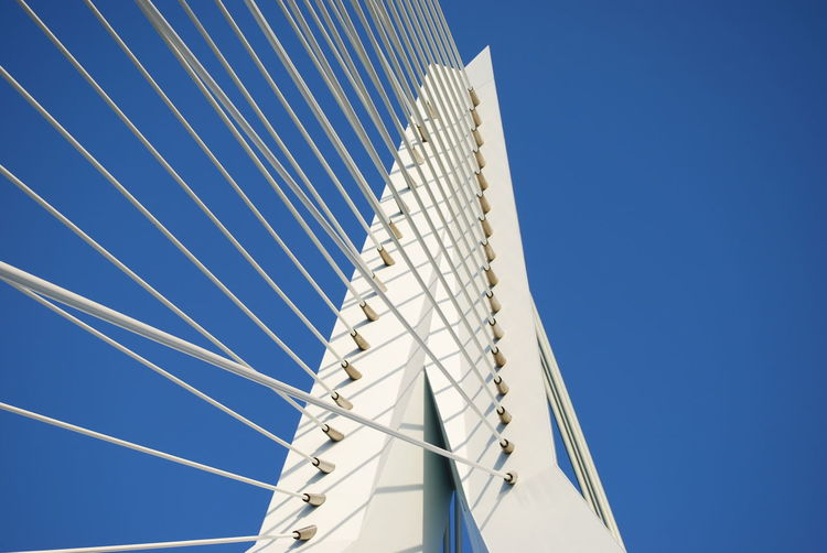 Low angle view of erasmus bridge clear blue sky