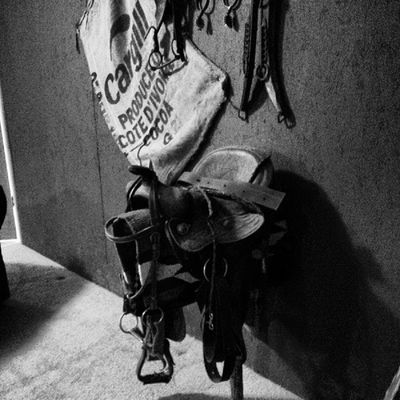 It has been a little over a year since Terry passed away. It just doesn't seem right to come back home without him here. These are some things still in his apartment that is on the back side of my parent's property. He used the saddle for Yogi, his horse that died a few years back. Avid horseman and good person, he is still missed. Ride on, my friend. Blackandwhite Memories Family Harrisonga horse saddle