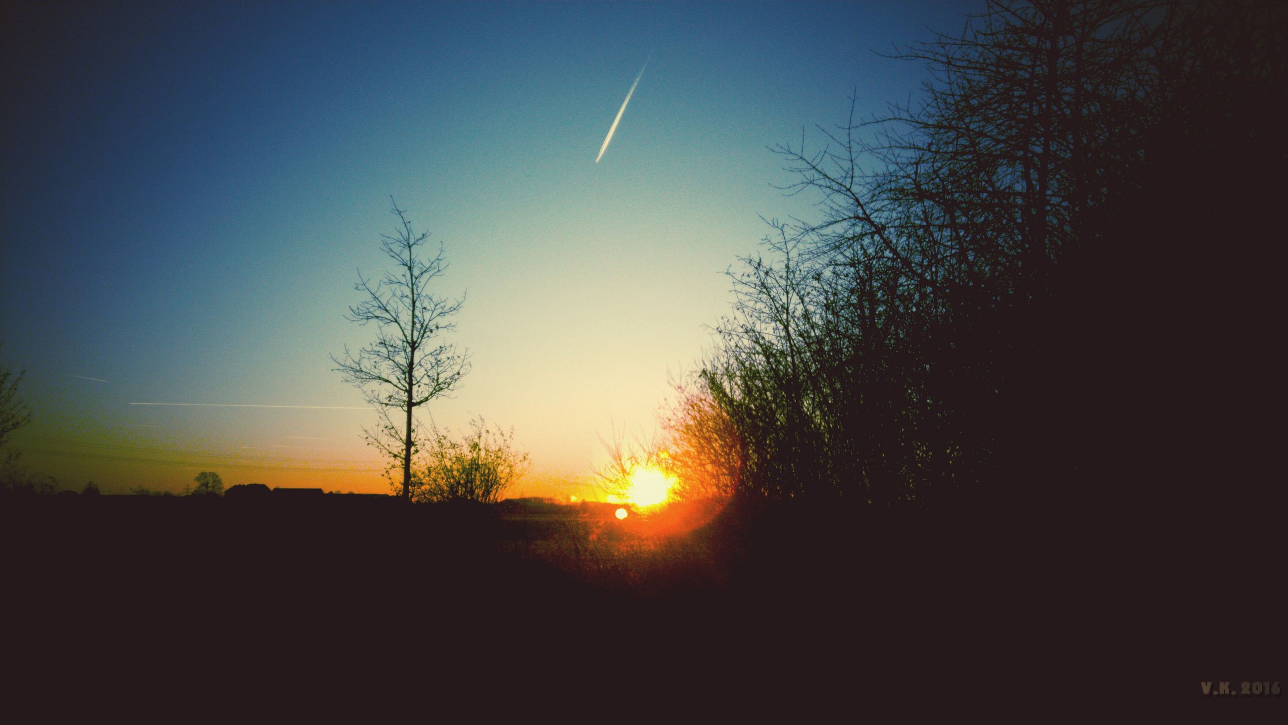 sunset, silhouette, beauty in nature, nature, scenics, tranquil scene, tranquility, no people, sun, tree, sky, outdoors, day