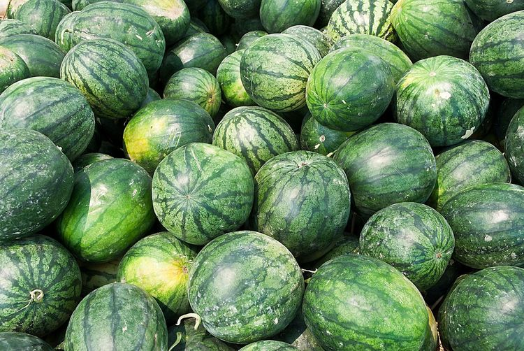 Full frame image of watermelon in market for sale