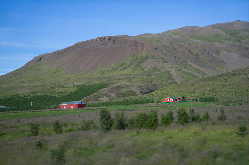 Iceland Iceland Trip Iceland Memories Islanda Nord North Iceland West Fjords West Tranquil Scene Non-urban Scene Nature Beauty In Nature Landscape Mountain Scenics - Nature Field Idyllic Green Color Outdoors