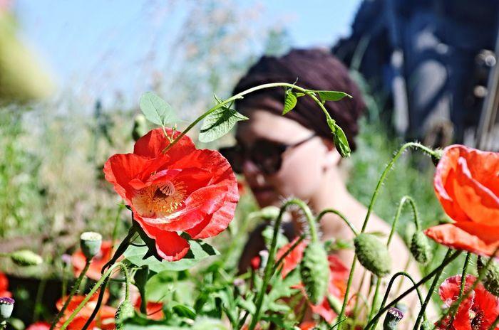 Enjoying Life Girl Beautiful Bokeh Relaxing Time Flower Red Flowers Nature Memory Summer