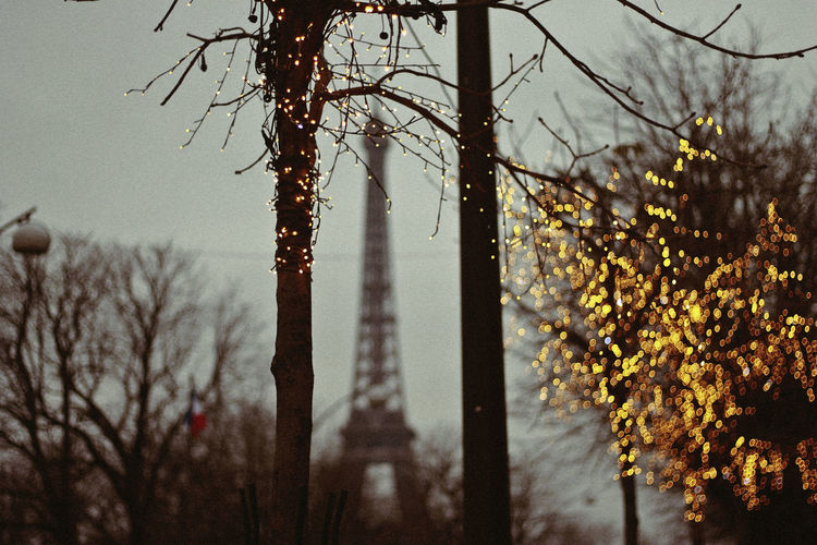 Paris, 2018 Christmas Christmas Lights Eiffel Tower Tour Eiffel Bare Tree Beauty In Nature Bokeh Branch Close-up Day Dusk Focus On Foreground Growth Nature No People Outdoors Plant Rain Rainy Season Selective Focus Sky Tranquility Tree Tree Trunk Trunk My Best Travel Photo