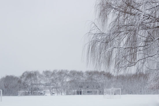 Winter Cold Temperature Snow Nature Weather Rural Scene Tranquil Scene Tree Scenics Snowing Outdoors Beauty In Nature No People Day Snowflake Landscape Sky