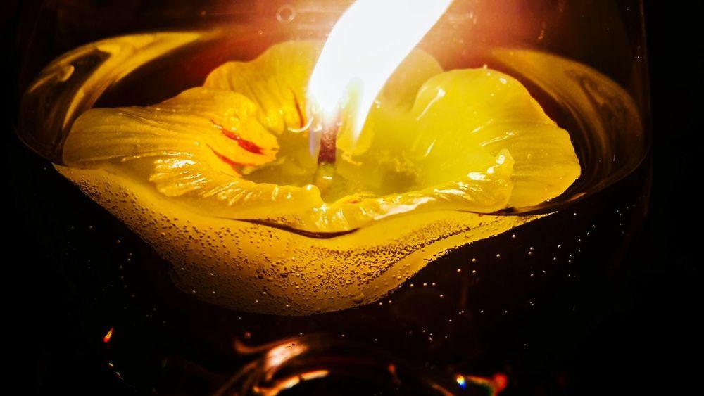Floating candle Floating Candle Candle
