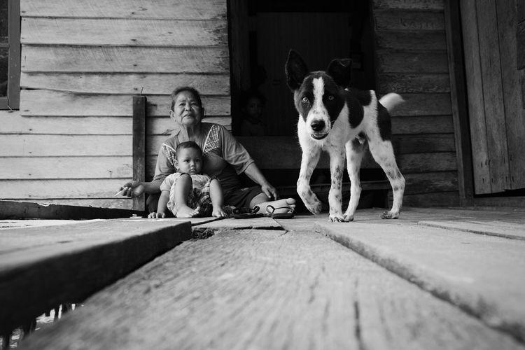 guardiAn NotYourCliche Dogs Of EyeEm Dog Life Wacth Dog Friendship Child Childhood Stuffed Toy Teddy Bear Pets Dog Playing Boys Full Length