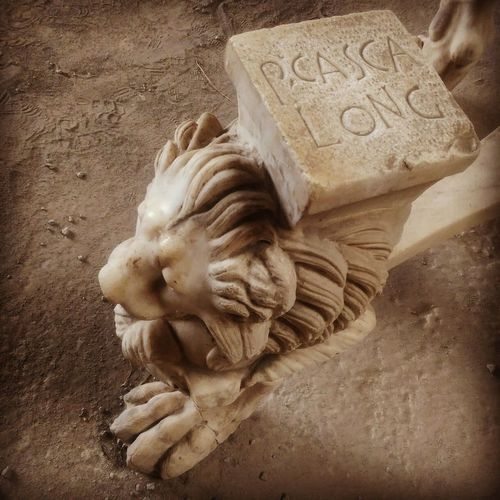 Il passo del gigante... Leone Pompeiscavi Lion Archeology Pictureoftheday Historical Monuments
