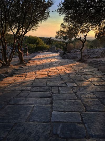 Acropolis road Tree The Way Forward Nature Tranquility Outdoors Tranquil Scene No People Scenics Beauty In Nature Sunset Sky Walkway Brick Road Bricks Ancient Road Turn Landscape Athens, Greece The Week On EyeEm Your Ticket To Europe Built Structure Sun Rays Sun Shadow Trees Day