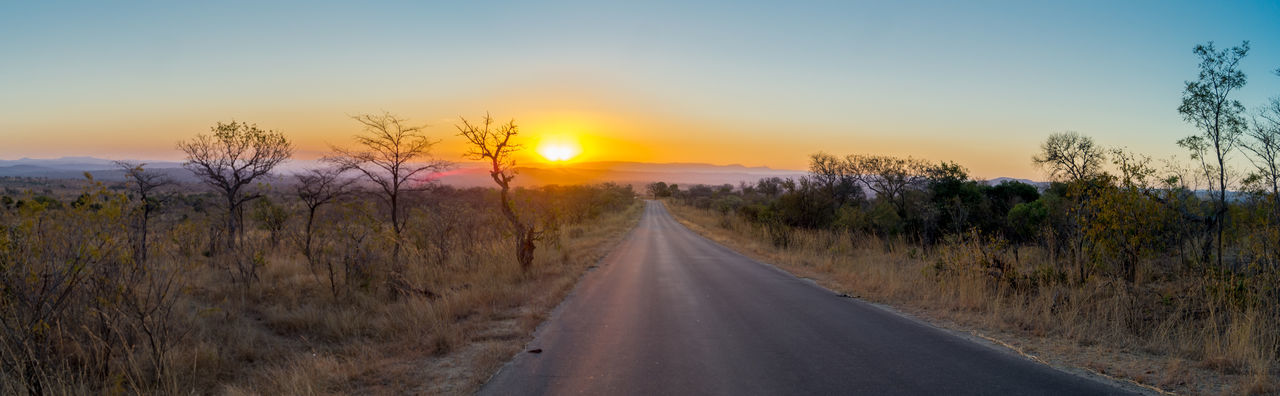 one of many roads Horizon Over Land Kruger Park KrugerLovers Krugernationalpark Krugerpark Krüger National Park  Krüger Nationalpark Landscape Nature Nature Photography Naturephotography Non-urban Scene Outdoors Road Safari Sky South Africa South Africa Is Amazing Southafrica Sunset Sunset #sun #clouds #skylovers #sky #nature #beautifulinnature #naturalbeauty #photography #landscape The Way Forward Tranquil Scene Tranquility
