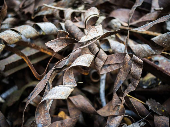 Close-Up View Of Rusty Scrap Metal