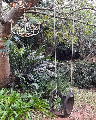 Day Outdoors No People Plant Tyre Swing