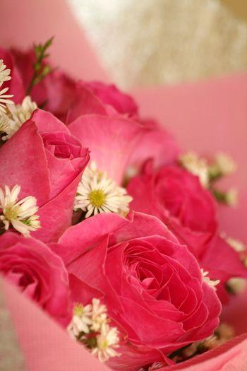 Close-up of pink flower bouquet