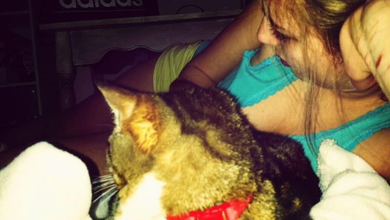 Cat Friends Fluo  Lovely