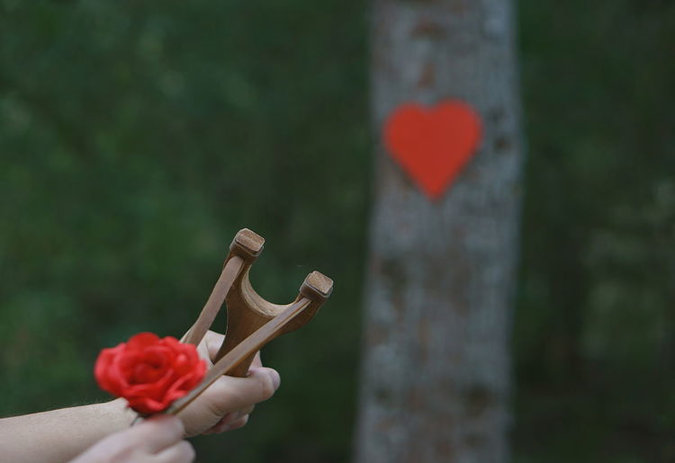 Cropped Image Of Person Aiming Rose At Heart Shape With Slingshot