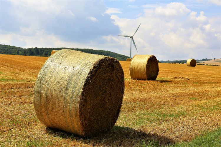Rural Scene Hay Farm Nature Plant No People Field Landscape Agriculture Land Harvesting Scenics - Nature Turbine Renewable Energy Fuel And Power Generation Environment Cloud - Sky Wind Power Bale  Wind Turbine Sky Outdoors