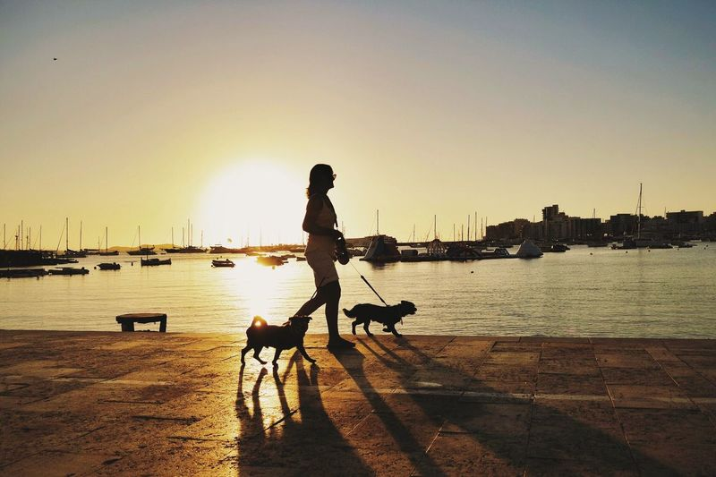 Side view of woman walking with dogs at promenade