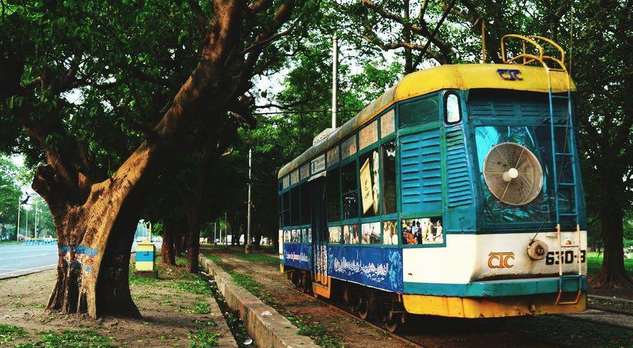 Up Close Street Photography Tram Streetsofkolkata Instakolkata Taking Photos Trees Kolkatainstagrammers KolkataStreets Kolkatadiaries Instaclick Nikoncamera