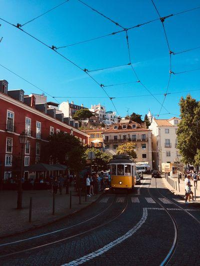 Aww Lisbon