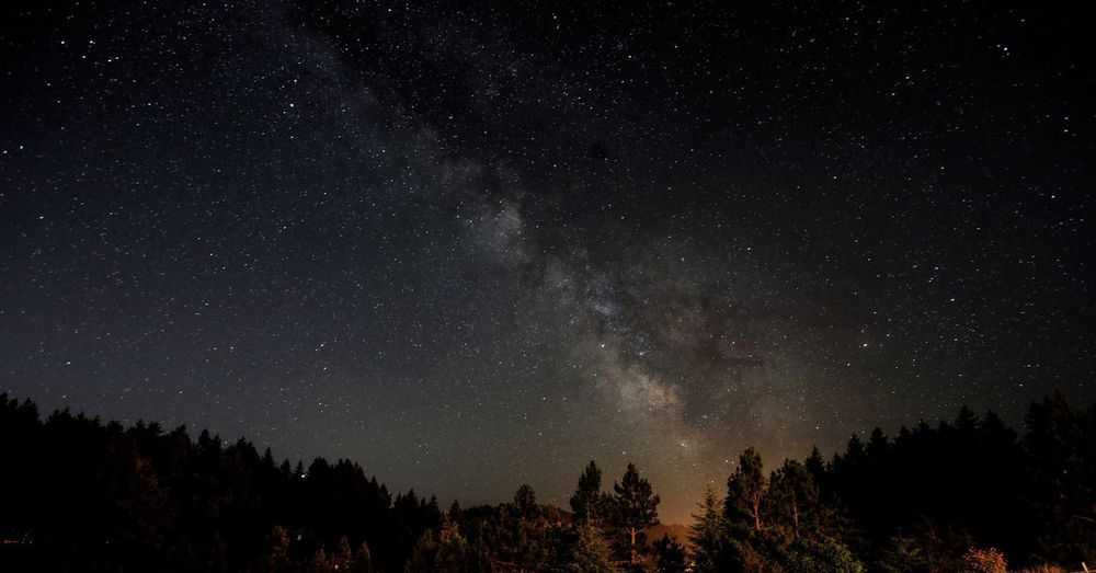 Milky Way over Eugene Star - Space Astronomy Space Night Beauty In Nature Scenics - Nature Tree Sky Galaxy Star Field Star Tranquil Scene Tranquility Nature No People Space And Astronomy Infinity