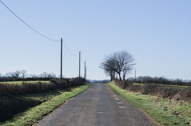 Out and about in the French countryside. Bare Tree Beauty In Nature Cable Clear Sky Day Electricity  Electricity Pylon Field Grass Landscape Nature No People Outdoors Road Rural Scene Sky Telephone Line The Way Forward Transportation Tree