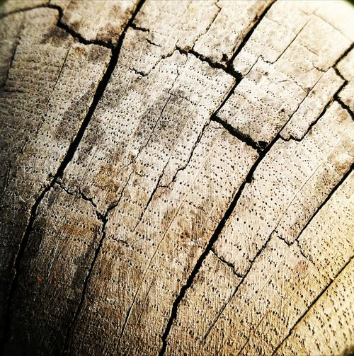 Wooden Cracks In Wood Close-up Material First Eyeem Photo Robust Outdoors Rustical Full Frame The Week Of Eyeem Textured  Maximum Closeness EyeEmNewHere