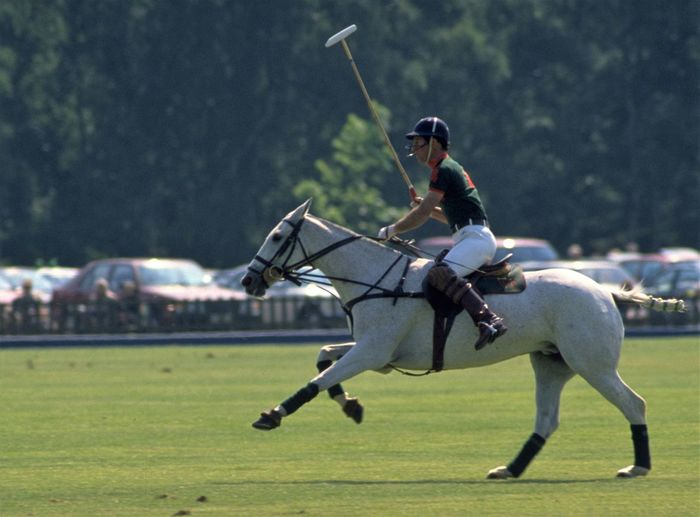 Prince Charles Playing Polo at Windsor. HRH The Prince of Wales playing polo at Guards Polo Club, on Smith's Lawn in Windsor Great Park. The Prince of Wales became interested in polo as a child, watching his father, The Duke of Edinburgh, play at Windsor. On 28th June 1990, The Prince broke his arm in two places when he fell from his pony during a match at Cirencester Park. http://pics.travelnotes.org/ Guards Polo Club Michel Guntern Polo Prince Charles Royal Family White Horse Windsor Great Park Animal Themes Competition Equestrian Full Stretch Grass Helmet Horse Horseback Riding Lifestyles Mallet One Person Outdoors Prince  Royalty Sport Sporting Sports Clothing Windsor