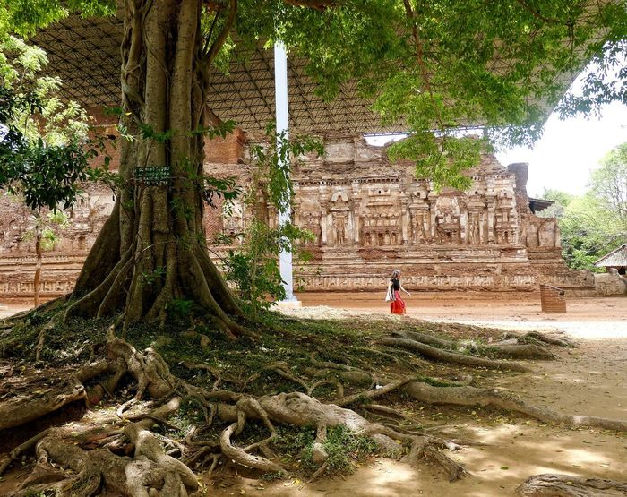 Bellezas ! Low Angle View Architecture_collection Arquitecturestyle Tree_collection  Women Monument Monuments Polonnaruwa Sri Lanka Tree Ancient Civilization Architecture Built Structure Historic Archaeology Old Ruin Visiting
