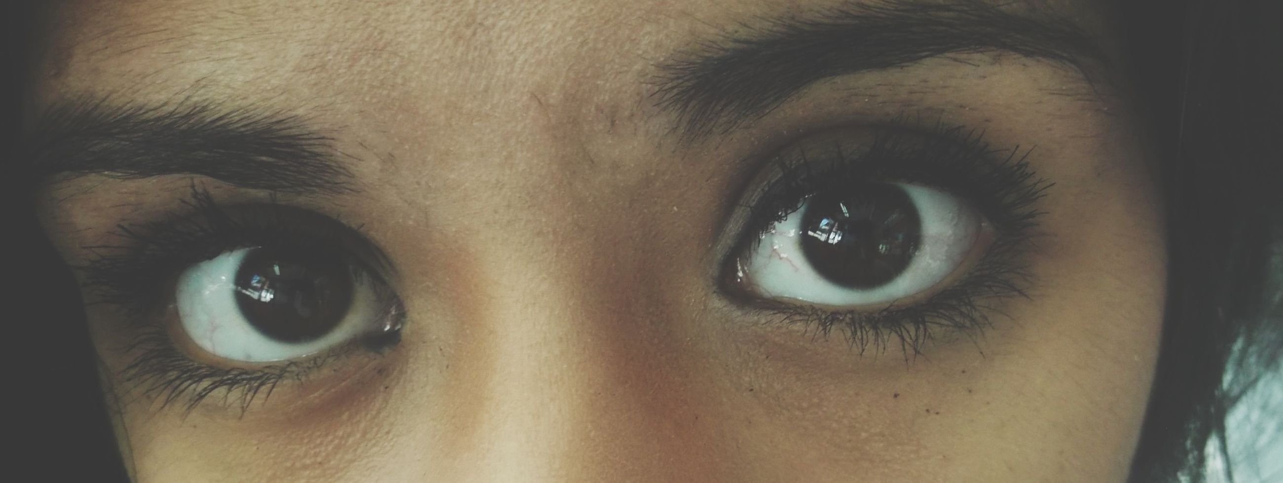 close-up, human eye, part of, looking at camera, portrait, human face, human skin, eyelash, indoors, eyesight, lifestyles, extreme close-up, extreme close up, sensory perception, full frame, headshot, detail