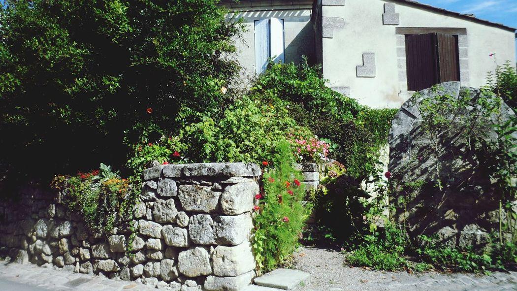 La maison de mes reves Coup De Coeur  Maison Vacances 💘❤️👑 St Emilion Rêve