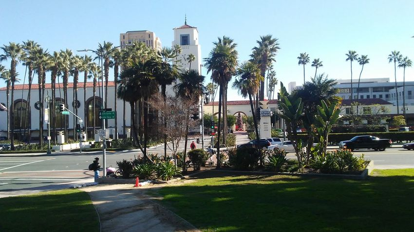 Los Angeles, California Walking Around Outdoors Architecture Train Station Palm Tree Vacations Exploring