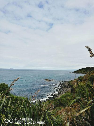 The edge of the world Beach Cloud Ocean Shore Sea Coast Nature Coastline