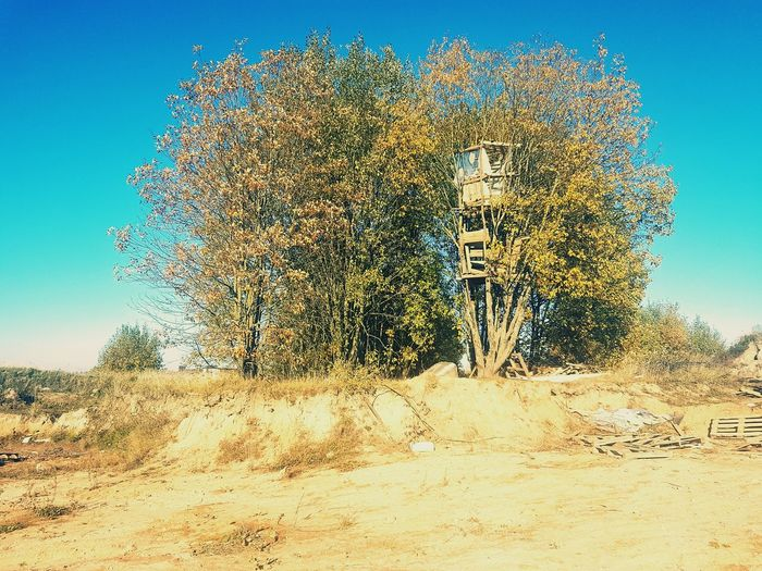 tree house Blue Sky No Cloud In The Sky Abandoned Places Abandoned Buildings Desolate Shabby Lifestyles Day Sand Tree House House House In Trees Sky Pixelated Motion Clear Sky Sky Close-up Dissolving A New Beginning