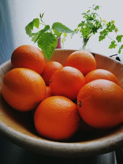 Close-up of orange fruits in container
