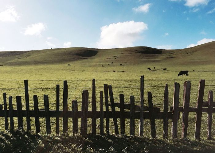 Wooden Fence At Grassy Field Against Sky