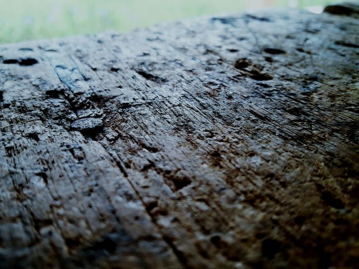 wooden table texture Imagination And Creative Imagination Photography Wooden Table Texture Wood - Material Woods Old-fashioned Old Texture Old Nails Nail Art Textured  Close-up No People Selective Focus Full Frame Day Pattern Outdoors Nature Backgrounds